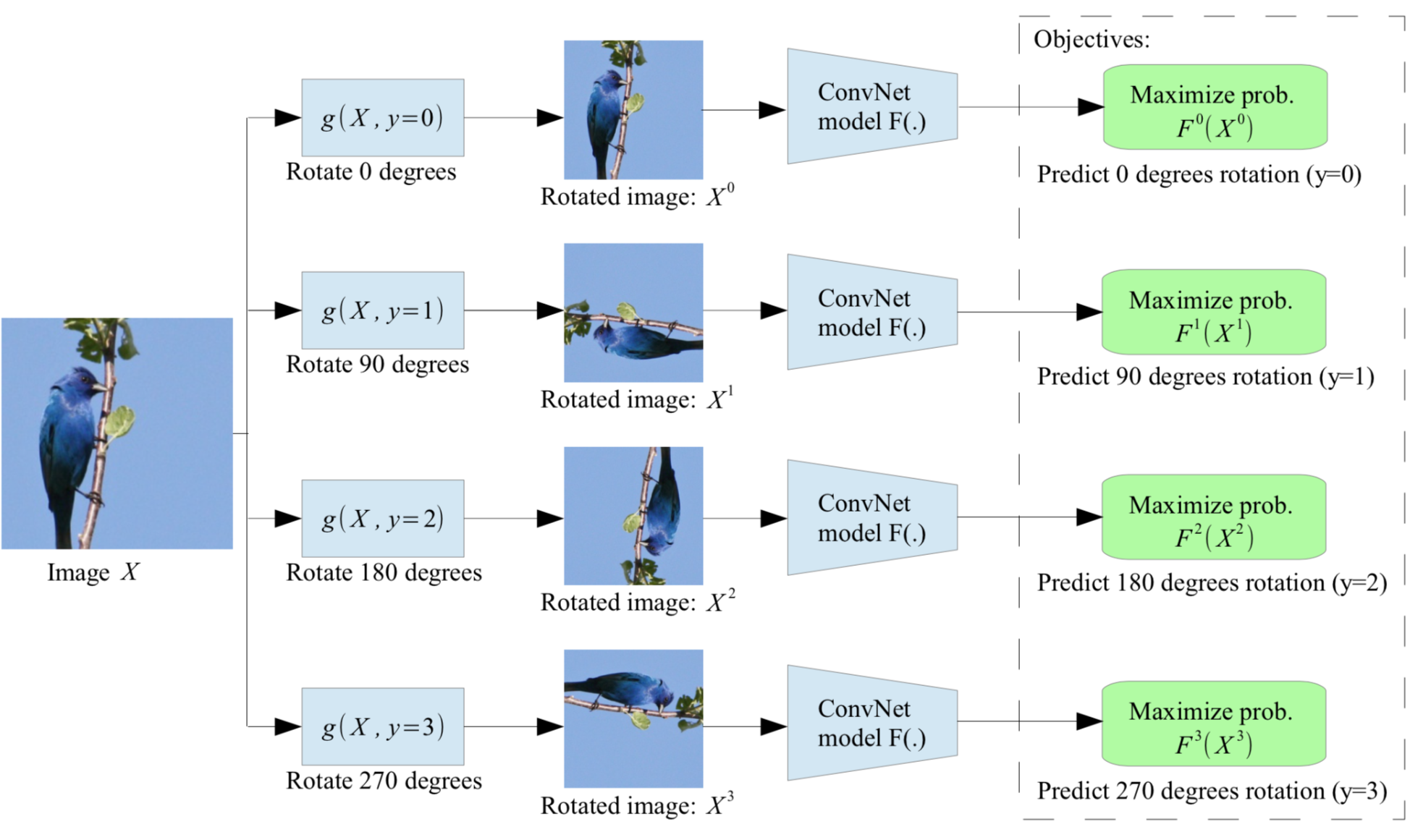 Self supervised by rotation prediction